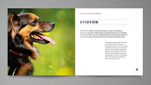 vet_ventures_brochure2